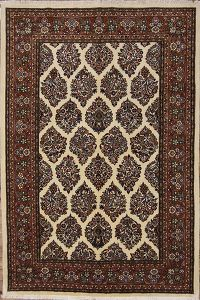 6x8 Sarouk Persian Area Rug