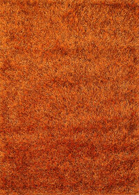 Orange Modern Shaggy Oriental Area Rug 4x6