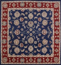 Navy Blue  Square Agra Oriental Area Rug 10x10