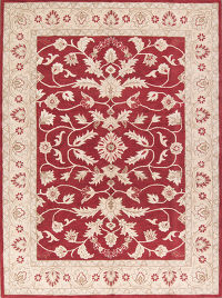 Traditional Floral Oushak Agra Oriental Hand-Tufted 10x13 Wool Red Area Rug