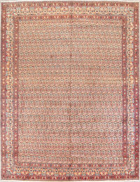 10x13 Mood Persian Area Rug