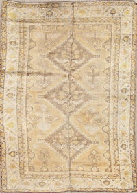 Tribal Geometric Shiraz Persian Hand-Knotted 4x6 Wool Area Rug