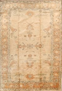 Palace Sized 11x16 Heriz Persian Area Rug