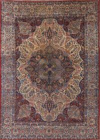 Pre-1900 Antique 9x13 Kerman Ravar Persian Area Rug