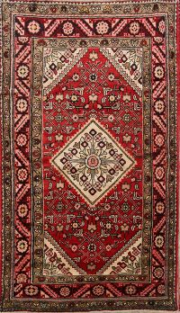 Geometric 4x7 Zanjan Persian Area Rug