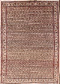 8x11 Mood Persian Area Rug