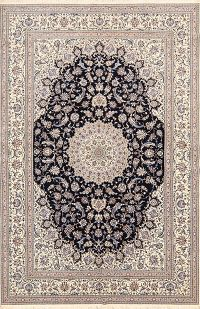 7x10 Nain Persian Area Rug