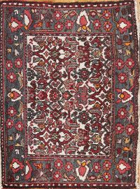 All-Over Floral Square 2x3 Bakhtiari Persian Area Rug