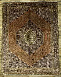 10x13 Bidjar Persian Area Rug