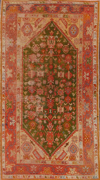 3x6 Oushak Turkish Oriental Area Rug