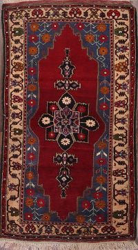 4x7 Anatolian Turkish Oriental Area Rug