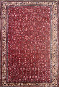 Sivas Turkish Oriental Area Rug 8x11