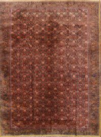 8x10 Tabriz Persian Area Rug