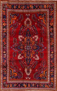 6x9 Lilian Persian Area Rug