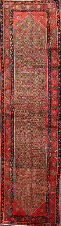All Over Koliaei Hamedan Persian Runner Rug 4x13