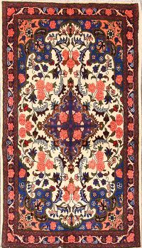 3x6 Bidjar Persian Area Rug