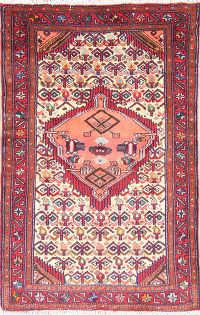 Geometric 3x4 Zanjan Persian Area Rug