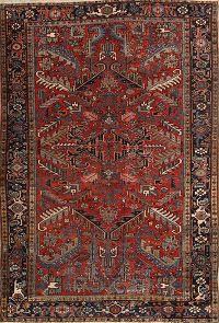 7x10 Heriz Persian Area Rug