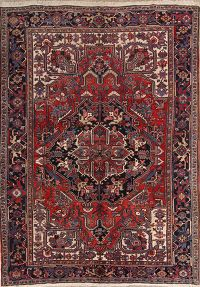 8x11 Heriz Persian Area Rug