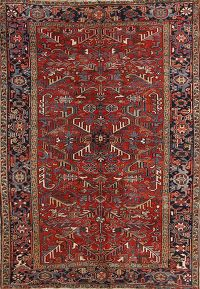 6x9 Heriz Persian Area Rug