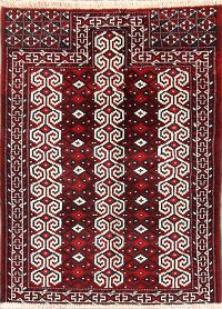 2x4 Turkoman Persian Area Rug