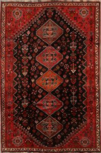6x9 Shiraz Nafar Persian Area Rug