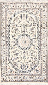 5x8 Nain Persian Area Rug