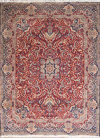 Soft Plush 9x13 Sarouk Machine Made Persian Area Rug