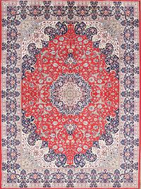 Soft Plush 10x13 Sarouk Persian Area Rug