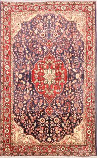 Traditional Floral 4x7 Sarouk Persian Area Rug