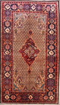 Bird Design 7x13 Koliae Hamedan Persian Area Rug