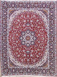 Soft Plush Floral 10x13 Najafabad Isfahan Persian Area Rug