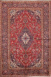 Traditional Floral 6x10 Kashan Persian Area Rug