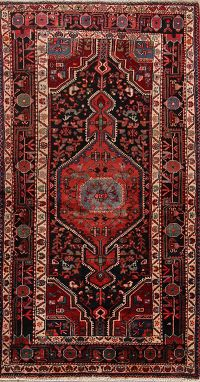 Geometric 4x7 Malayer Hamadan Persian Area Rug
