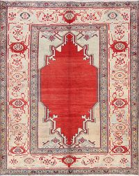 Geometric 5x7 Sultanabad Persian Area Rug