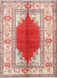 Geometric 5x7 Sultanabad Oushak Persian Area Rug