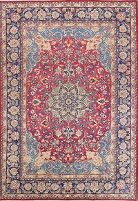 Floral 8x12 Najafabad Persian Area Rug