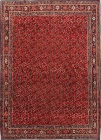 All-Over Floral Bidjar Persian Area Rug 9x12