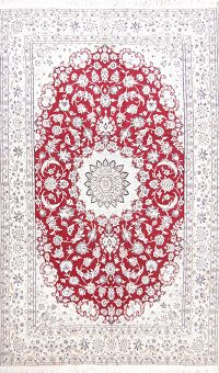 Floral Red 6x10 Nain Isfahan Persian Area Rug