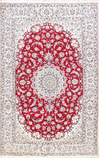 Floral Medallion 6x9 Nain Persian Area Rug