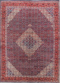 Geometric 10x13 Sarouk Persian Area Rug
