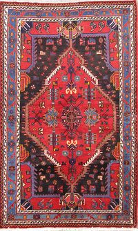 Geometric 4x6 Malayer Hamadan Persian Area Rug