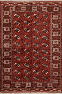 All-Over Geometric Balouch Persian Area Rug 7x10