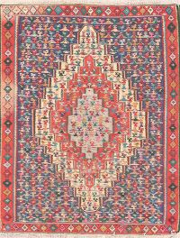 Pictorial Senneh Persian Area Rug 4x5