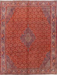 Geometric Bidjar Persian Area Rug 10x12