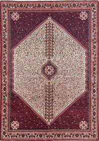 Vegetable Dye Tribal Wool Abadeh Shiraz Persian Area Rug 6x10