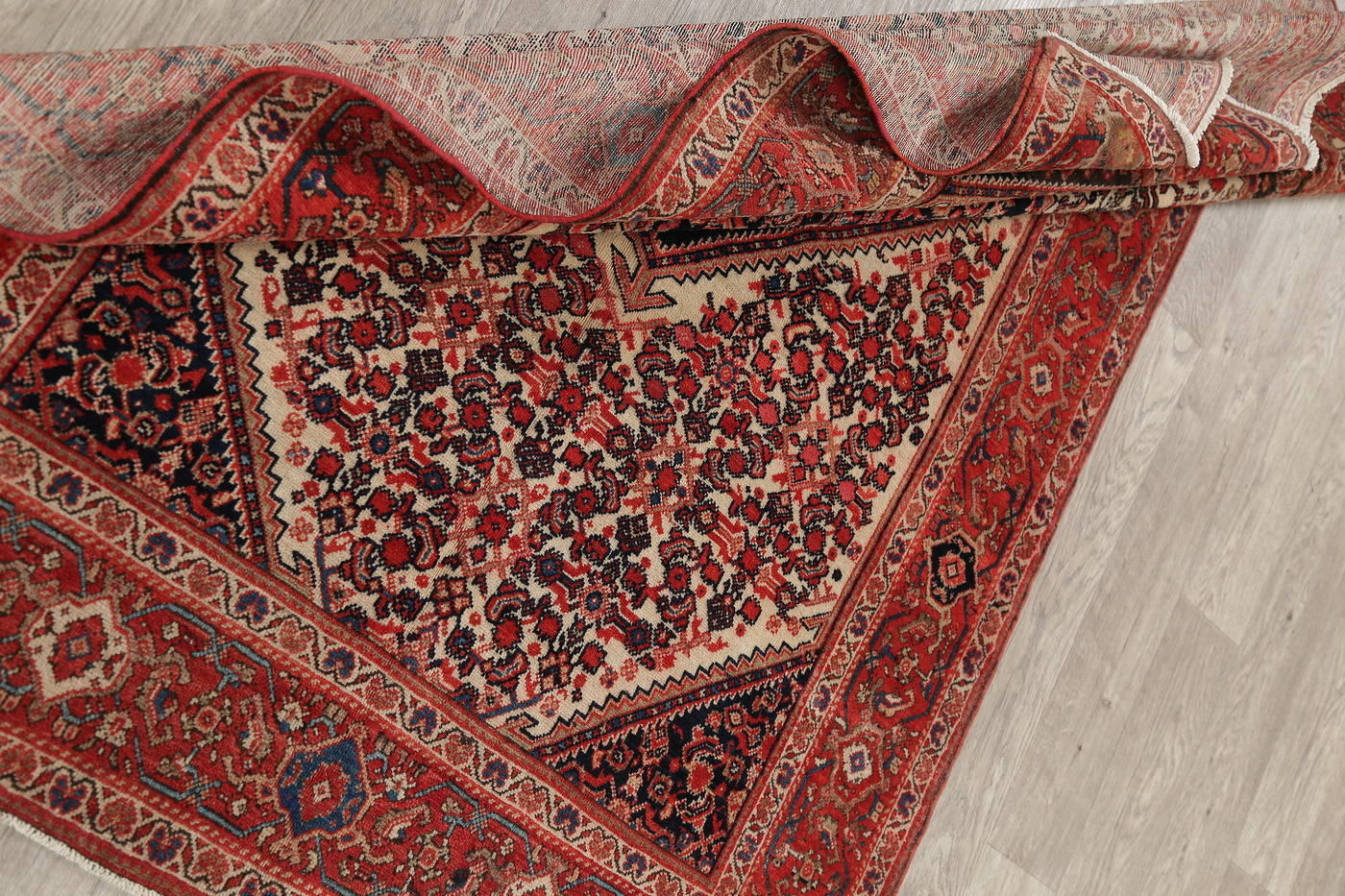 Floral Malayer Mishen Persian Area Rug 4x7 image 19