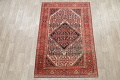 Floral Malayer Mishen Persian Area Rug 4x7 image 2