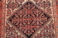 Floral Malayer Mishen Persian Area Rug 4x7 image 4