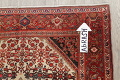 Floral Malayer Mishen Persian Area Rug 4x7 image 10